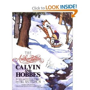 Authorative Calvin and Hobbes.jpg