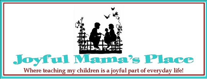 Joyful Mama's Place.jpg