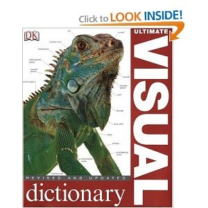 Visual Dictionary.jpg